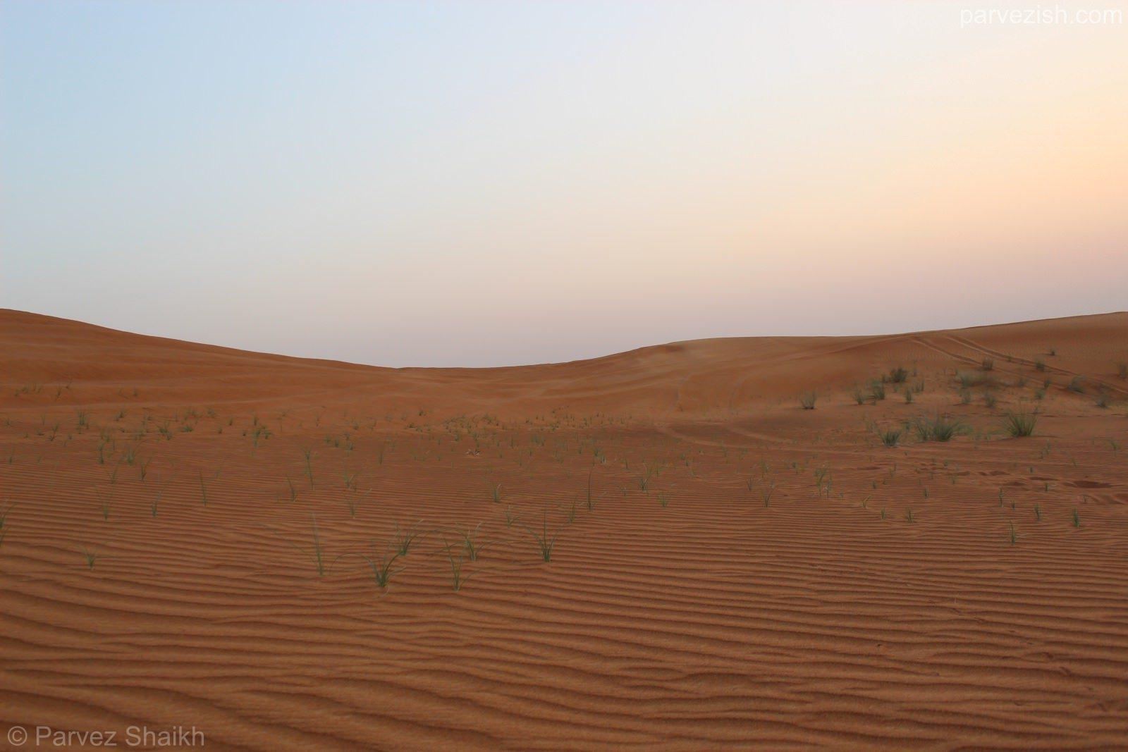 Wind Ripples in Dubai Desert