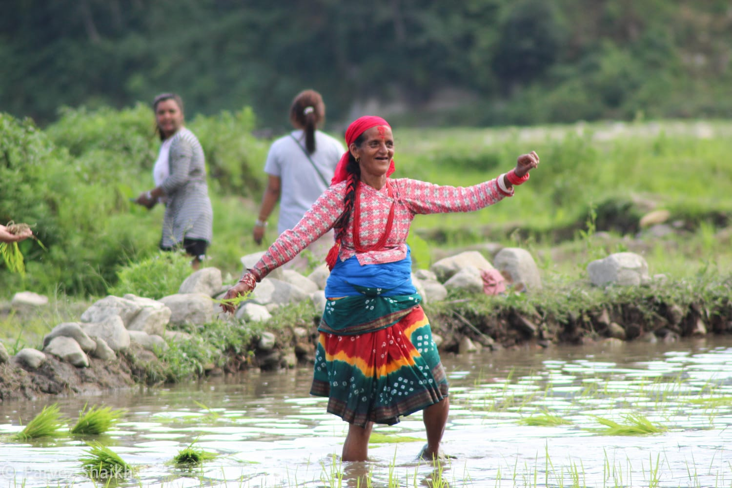A Nepali Woman Dancing to Folk Music at Ropain Festival