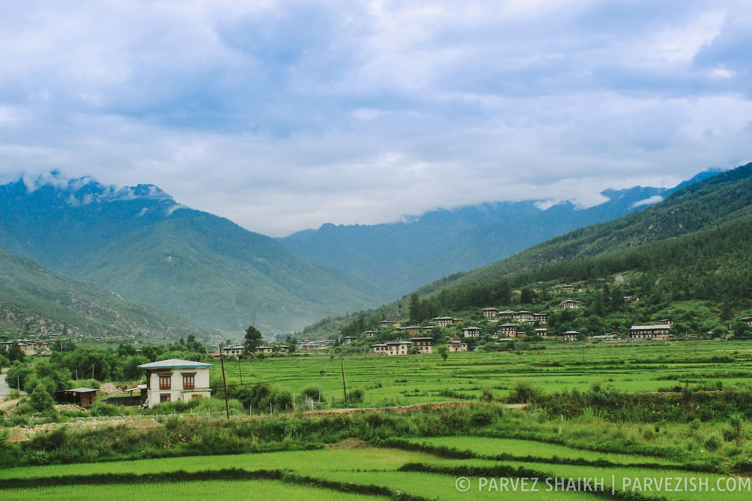 A View from My Homestay in Paro, Bhutan