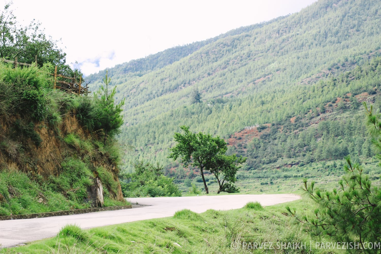 On My Way to Paro Countryside