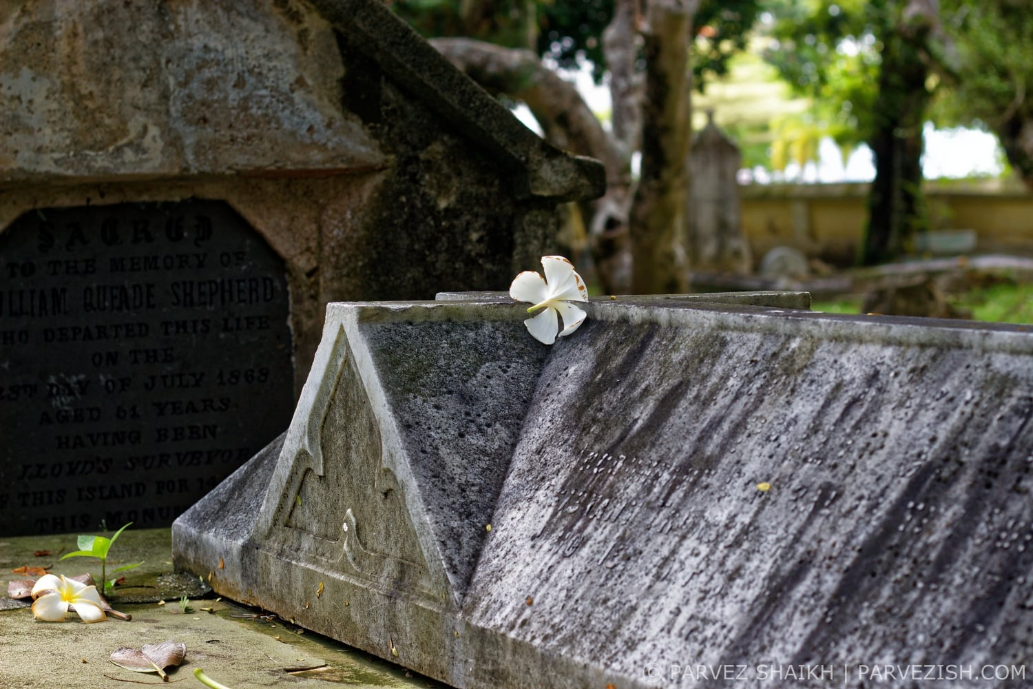 Graves at the Northam Road Cemetery Penang