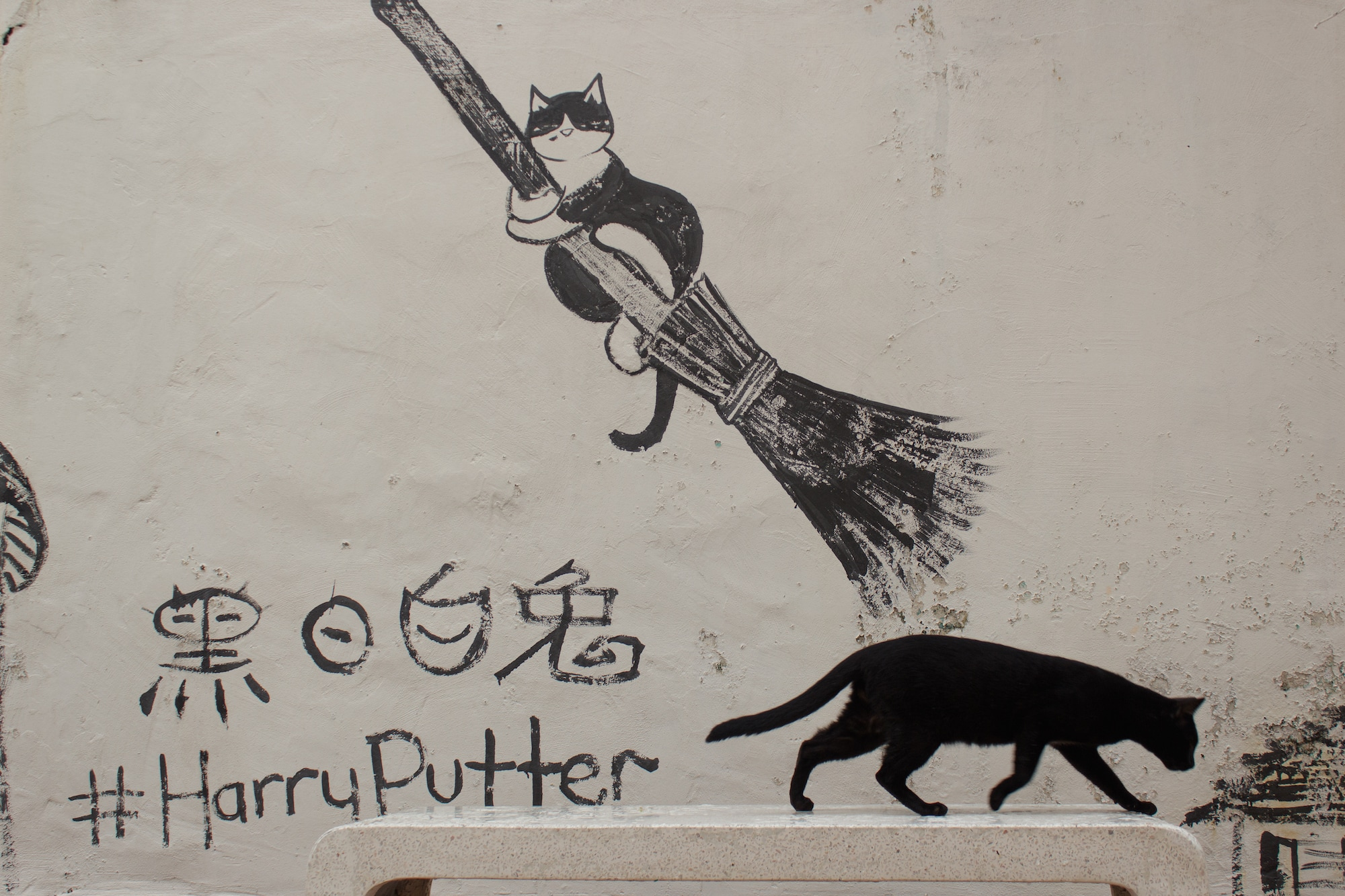 A cat passing by the Harry Putter mural, Malacca