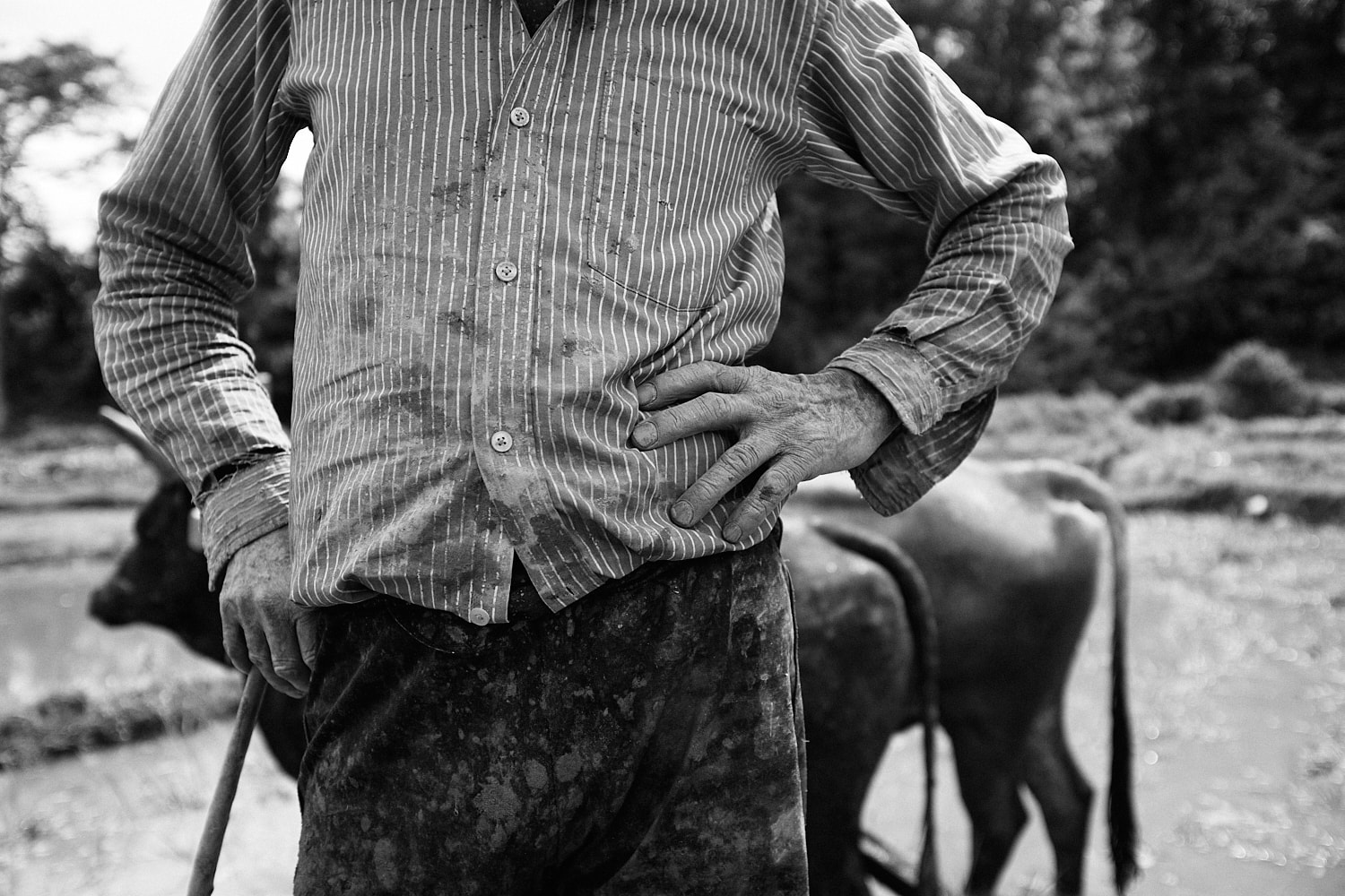 July 2021, Begnas, Nepal: A farmer poses for a picture